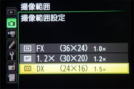 DSC02030s.jpg