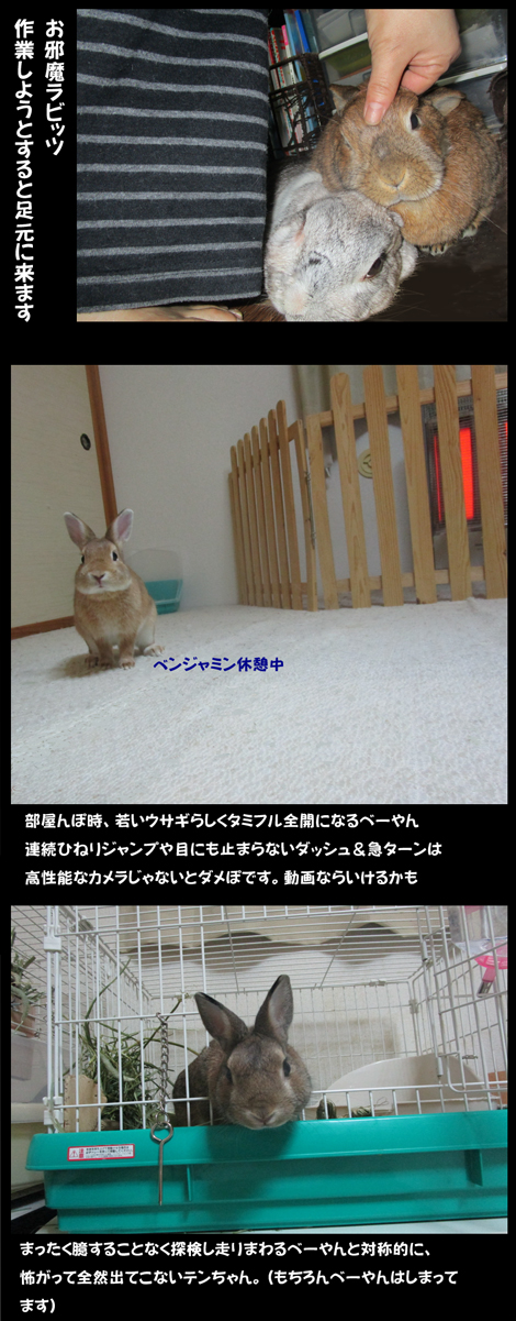photo0229.jpg