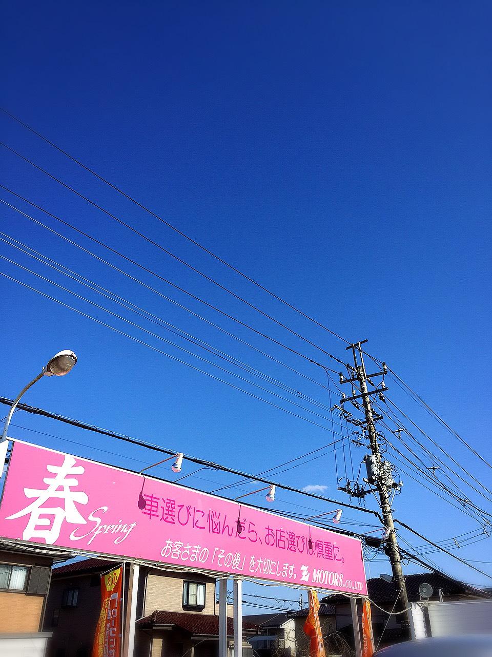 S__11255810.jpg